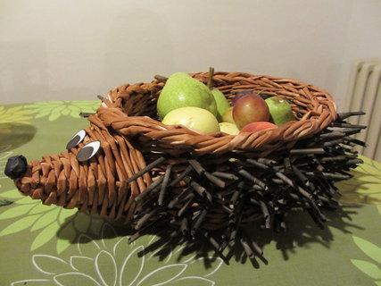 FOTKA - ježek