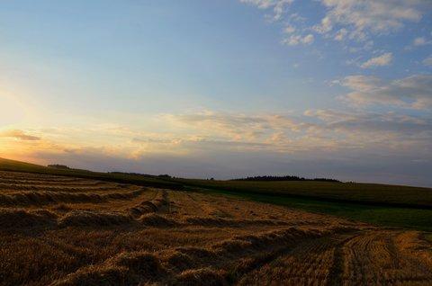 FOTKA - Krátce před západem slunce