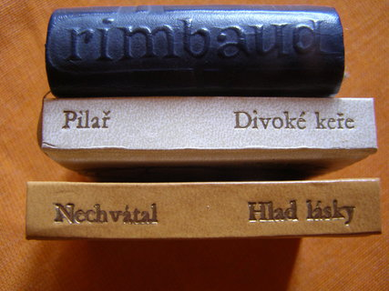 FOTKA - mini knížky poezie