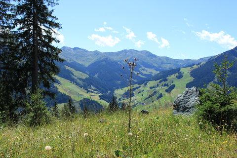 FOTKA - Výlet na Reiterkogel v Hinterglemmu 40