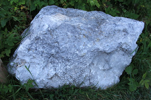 FOTKA - Triassic Park - Steinplatte Waidring 10