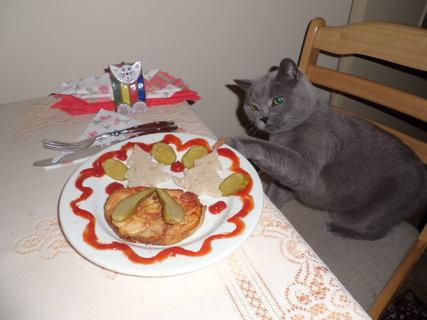 FOTKA - u jídla je Mazlík vždy první