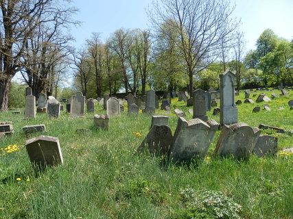FOTKA - židovský hřbitov, obec Šafov, jižní Morava