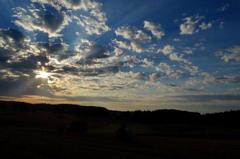 FOTKA - Paprsky pozdního léta