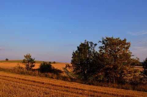 FOTKA - Už skoro podzimní