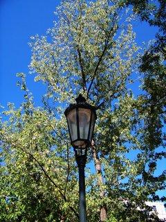 FOTKA - 28.8.12, lampy v parku u kostela