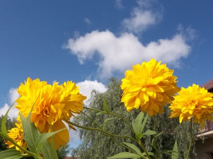 FOTKA - Obloha 28.8.2012