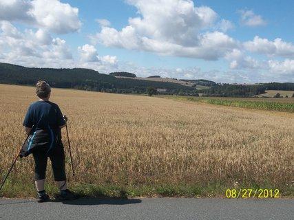 FOTKA - pole na Vysočině
