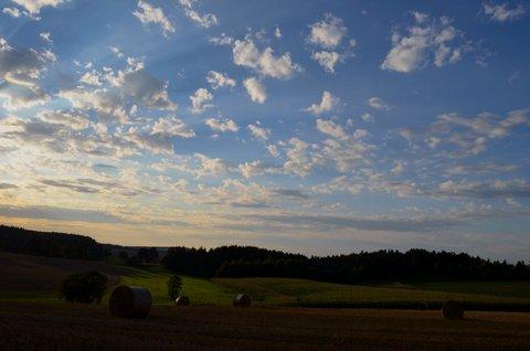 FOTKA - Podvečerní srpnová Vysočina