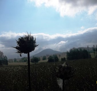 FOTKA - Cestou z Janova do Růžové
