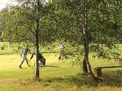 FOTKA - České Švýcarsko,golf  v Janově