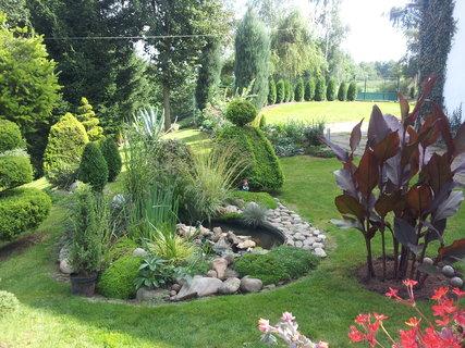 FOTKA - Zahrada ráno....