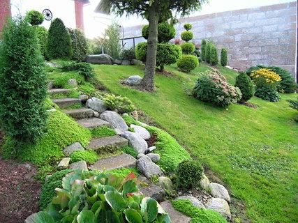 FOTKA - Zahrada dnes navečer...