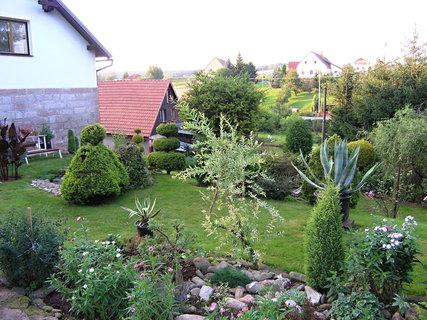 FOTKA - Zahrada dnes navečer....