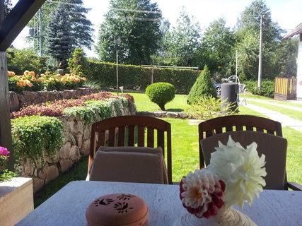FOTKA - Zahrada dnes ráno