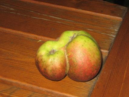 FOTKA - Jablko nebo dvě?
