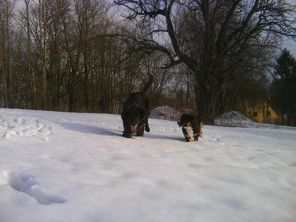 FOTKA - vzpomínka na sníh