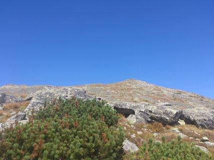 FOTKA - k vrcholu.