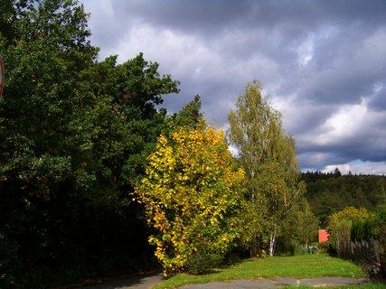 FOTKA - krajina směrem ke Krčskému lesu..