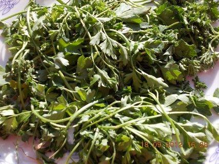FOTKA - sušení zel. do polévky