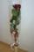 Růžička od Danečka