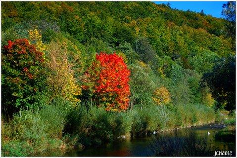 FOTKA -  Z m�ch toulek  -podzim