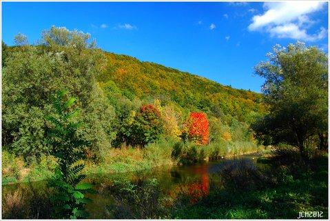 FOTKA - z m�ch toulek  - podzim .