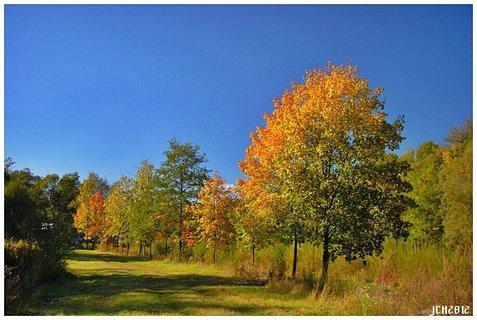 FOTKA - z mých toulek - podzim ...
