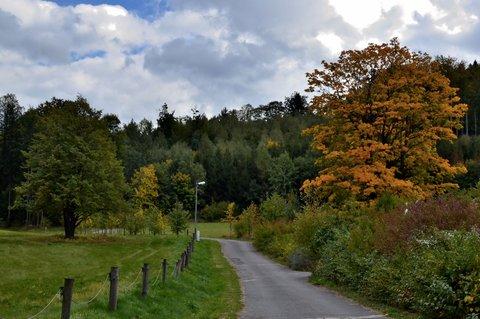 FOTKA - První podzimní