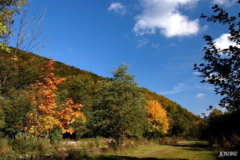 FOTKA - Podzimní toulky ...