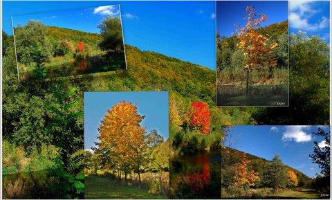 FOTKA - Krásy podzimu -