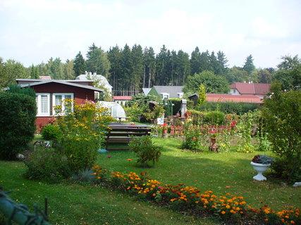 FOTKA - Vzpomínka na letní zahradu
