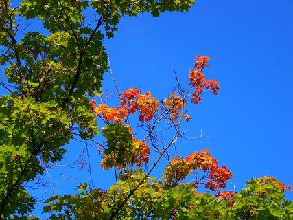 FOTKA - 3.10.2012, včera byl ještě krásný den..