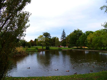 FOTKA - rybník, stromy se začínají barvit..