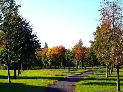 FOTKA - 6.10.2012, ranní procházka, cestička parkem k rybníku..