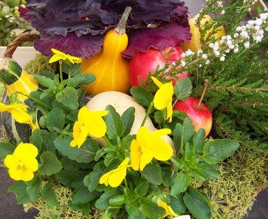 FOTKA - podzimní dekorace 2