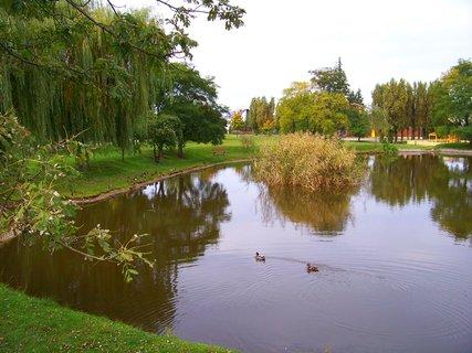 FOTKA - sobotní prosluněná procházka, rybník Ohrada, Kunratice