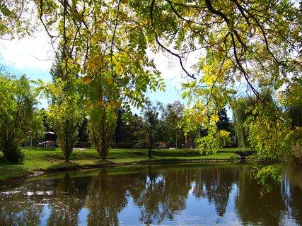 FOTKA - sobotní prosluněná procházka, rybník směrem k hlavní silnici