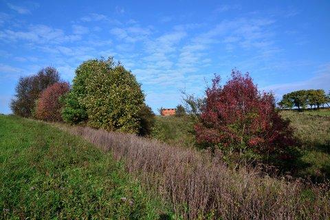 FOTKA - Podzimní variace