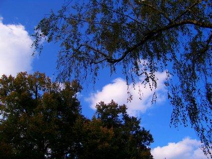 FOTKA - 11.10.2012, podzimní procházka
