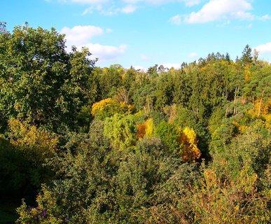 FOTKA - 11.10.2012, procházka, pohled na Krčský les