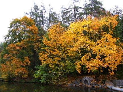 FOTKA - 12.10.12, dopolední procházka k Dolnomlýnskému rybníku
