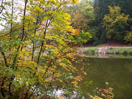 FOTKA - 12.10.12, u břehu rybníka .,,