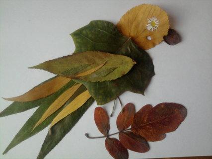 FOTKA - ptáček z listů I