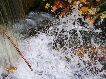 FOTKA - včerejší podzimní procházka, voda ve splavu