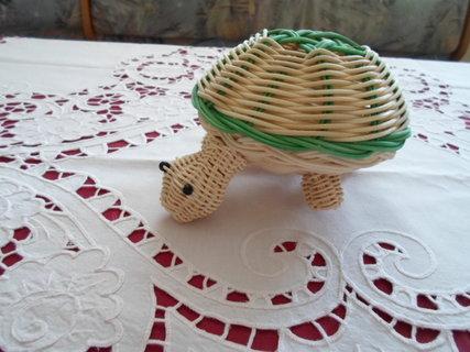 FOTKA - želvička 1