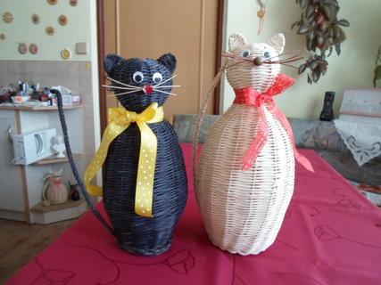 FOTKA - kočky 1