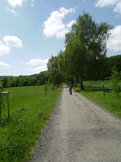 FOTKA - cesta na Nový Hrad