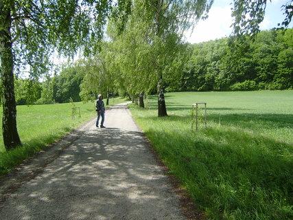 FOTKA - cesta na Nový Hrad 4