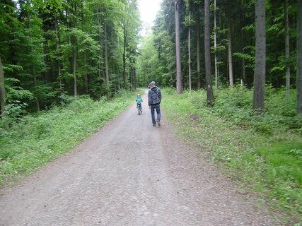 FOTKA - cesta na Nový Hrad 13